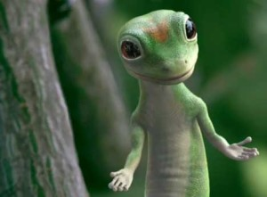 geico-gecko-300x221