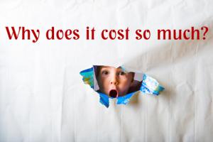 Social Media Management Costs